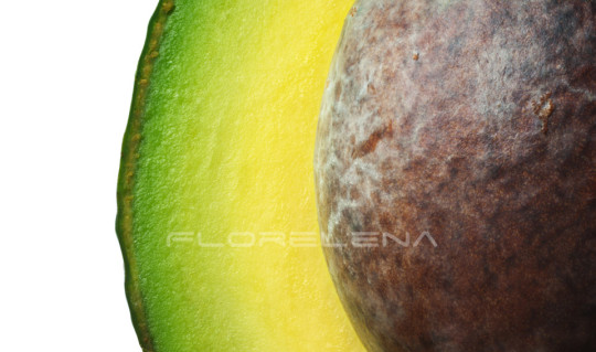 Abstract picture of avocado with seed