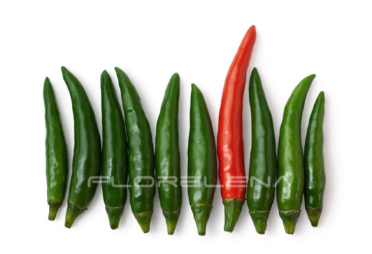 Spicy green and one red chili peppers isolated on white