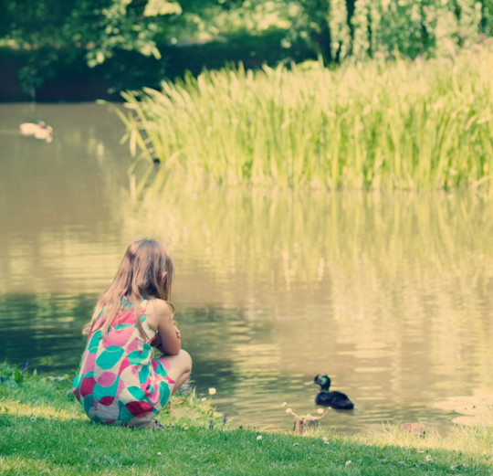 Little girl sitting at pond feeding duck